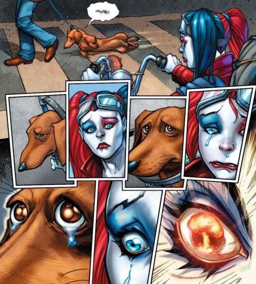 Impossible de résister à un regard de chien battu