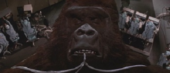 Heu… En fait, on dirait qu'il est pas mort King Kong, d'accord ?