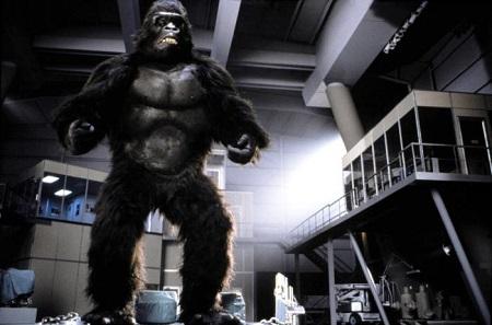 Hé les mecs! J'ai un scénario béton: Et si on ressuscitait King Kong pour mieux le re-tuer?!!!