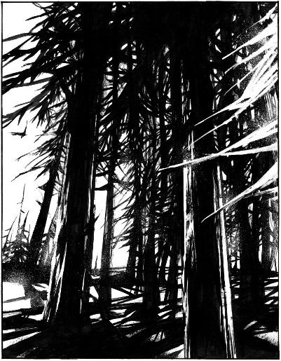 Des arbres totémiques