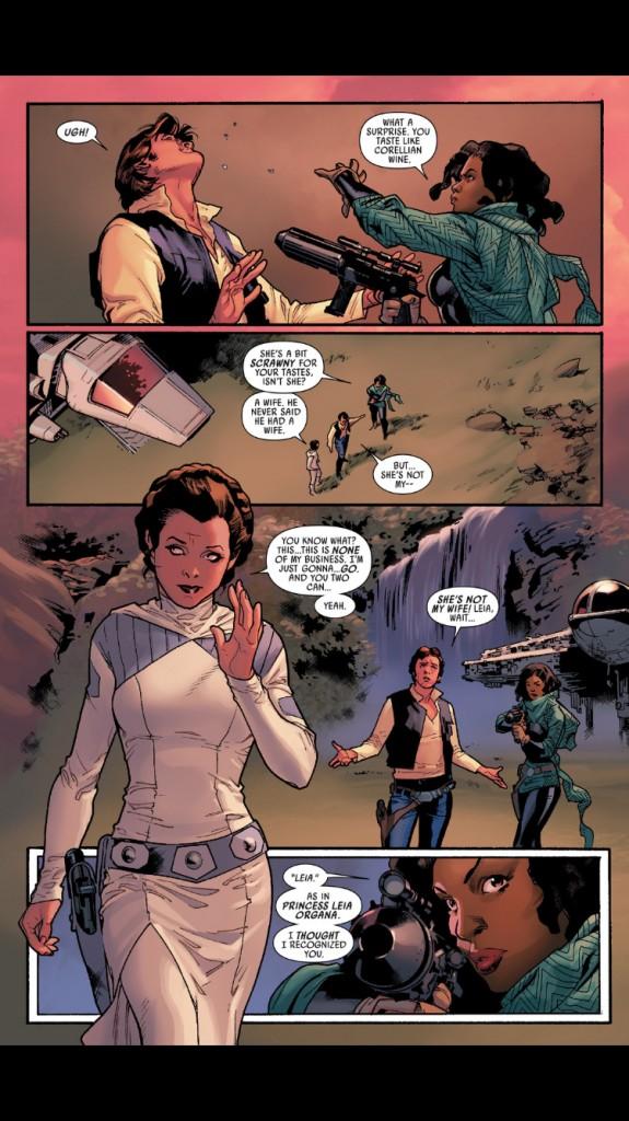 Madame Han Solo! WTF ou pas WTF???