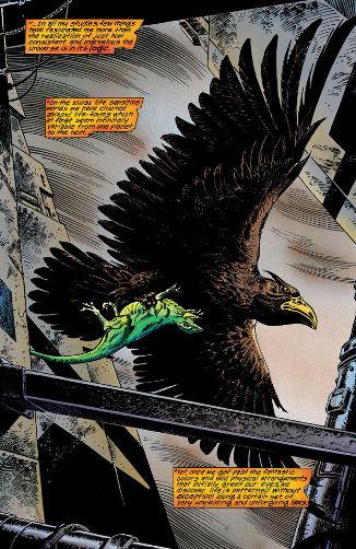 La suprématie des races aviaires