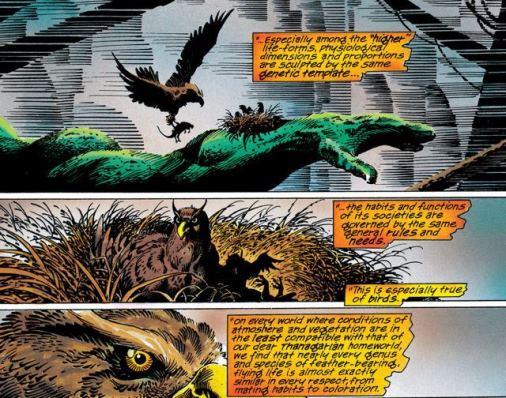 Le traité d'ornithologie de Paran Katar