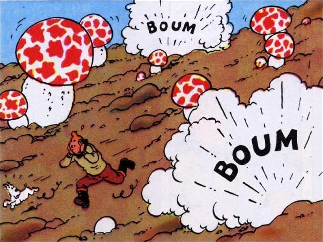 Des champignons… atomiques?