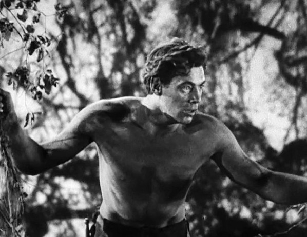Ungawak !  © RKO.  Source : Wikipedia https://commons.wikimedia.org/wiki/File:Tarzan_the_Ape_Man_(1932)_Trailer_-_Johnny_Weissmuller.jpg#mw-jump-to-license